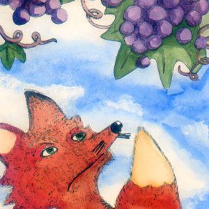 volpe-uva